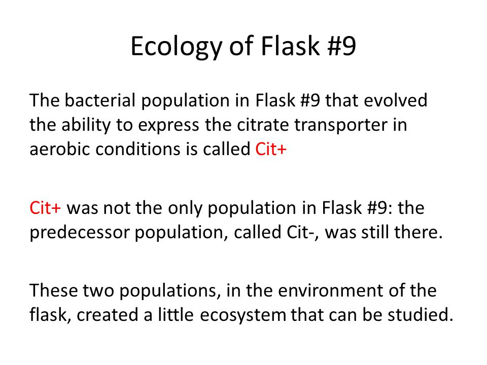 Ecology of Flask #9