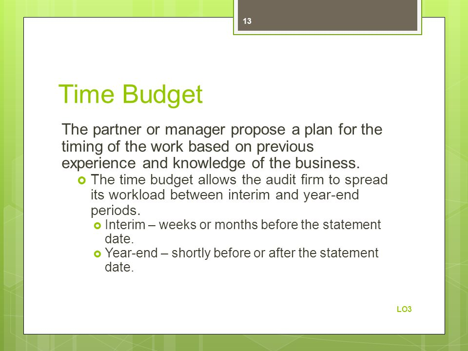 Time Budget The partner or manager propose a plan for the timing of the work based on previous experience and knowledge of the business.