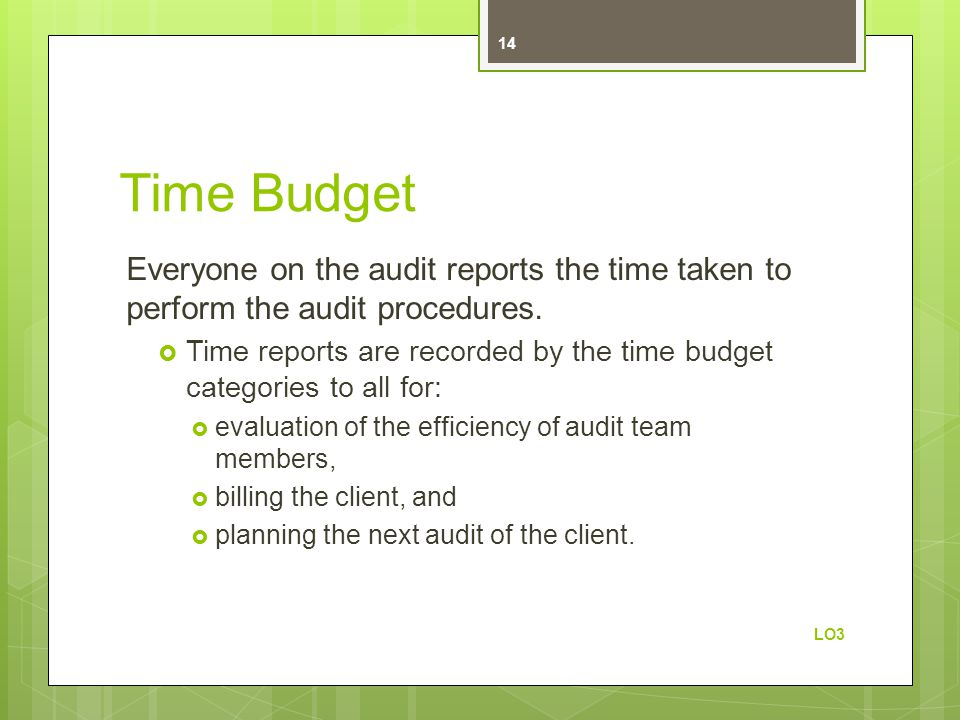 Time Budget Everyone on the audit reports the time taken to perform the audit procedures.