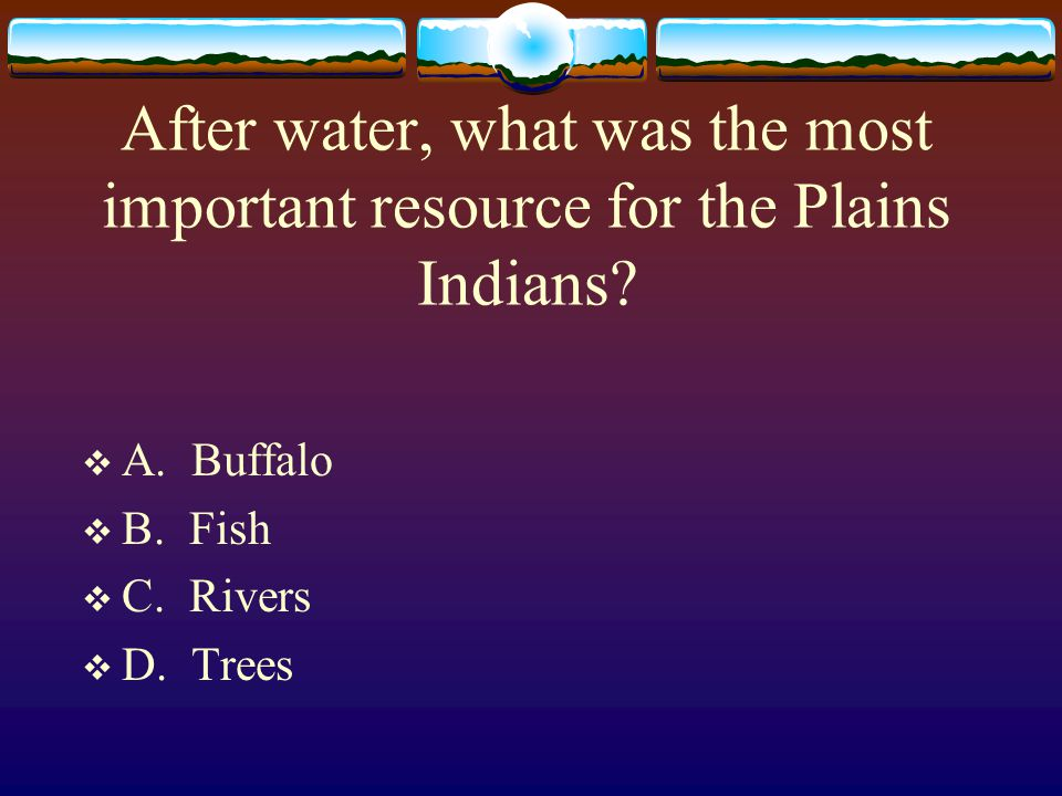 After water, what was the most important resource for the Plains Indians