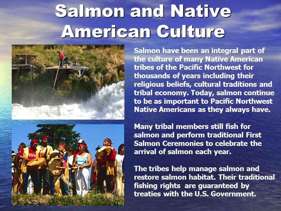 Salmon and Native American Culture