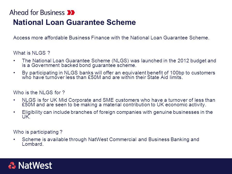 National Loan Guarantee Scheme