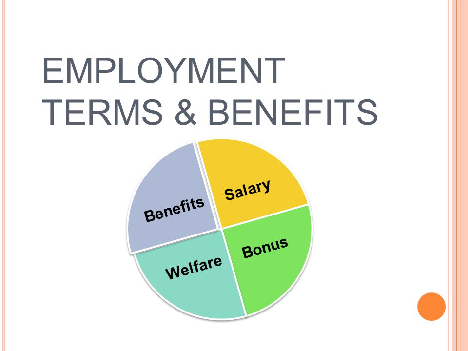 EMPLOYMENT TERMS & BENEFITS