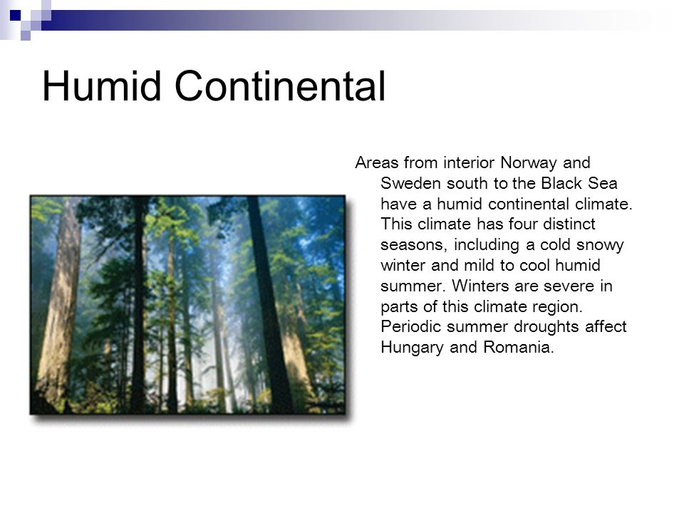Humid Continental