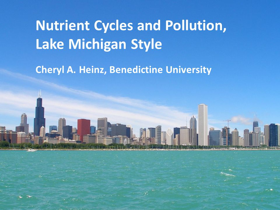 Nutrient Cycles and Pollution, Lake Michigan Style
