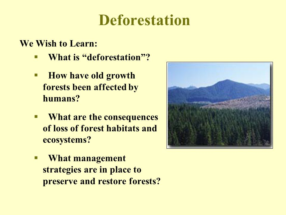 Deforestation We Wish to Learn: What is deforestation
