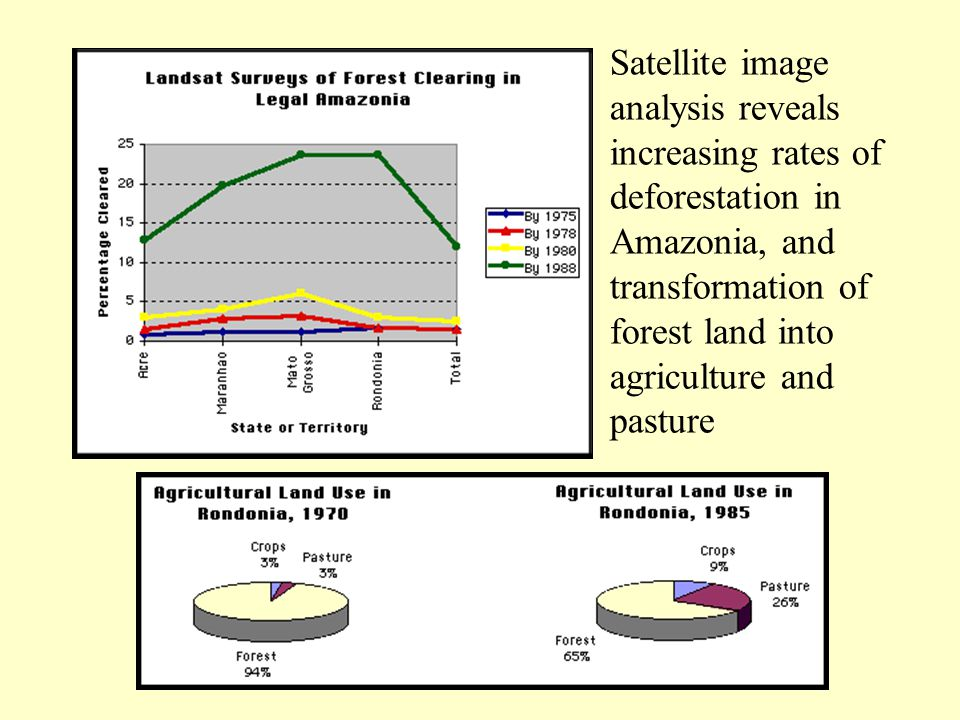 Satellite image analysis reveals increasing rates of deforestation in Amazonia, and transformation of forest land into agriculture and pasture