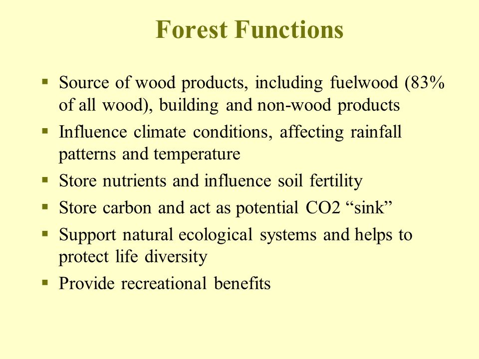 Forest Functions Source of wood products, including fuelwood (83% of all wood), building and non-wood products.