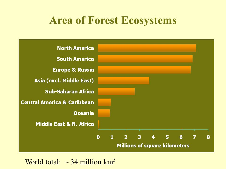 Area of Forest Ecosystems