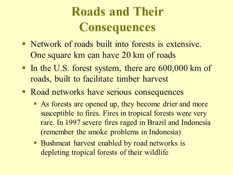Roads and Their Consequences