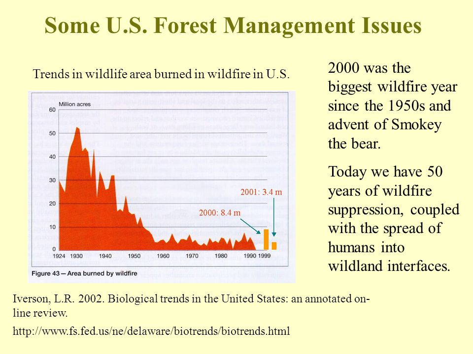 Some U.S. Forest Management Issues