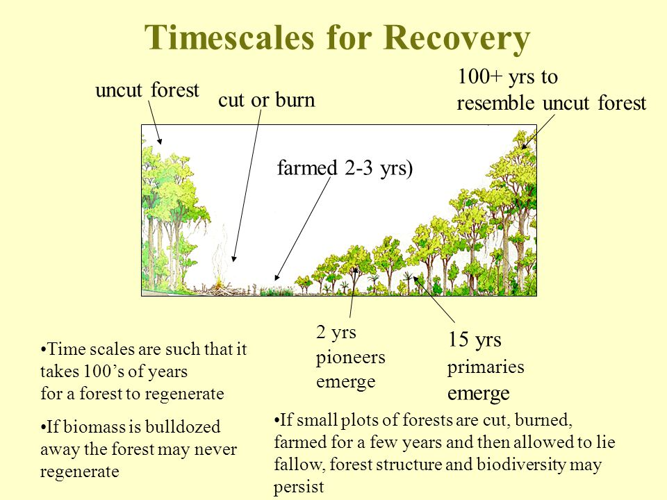 Timescales for Recovery