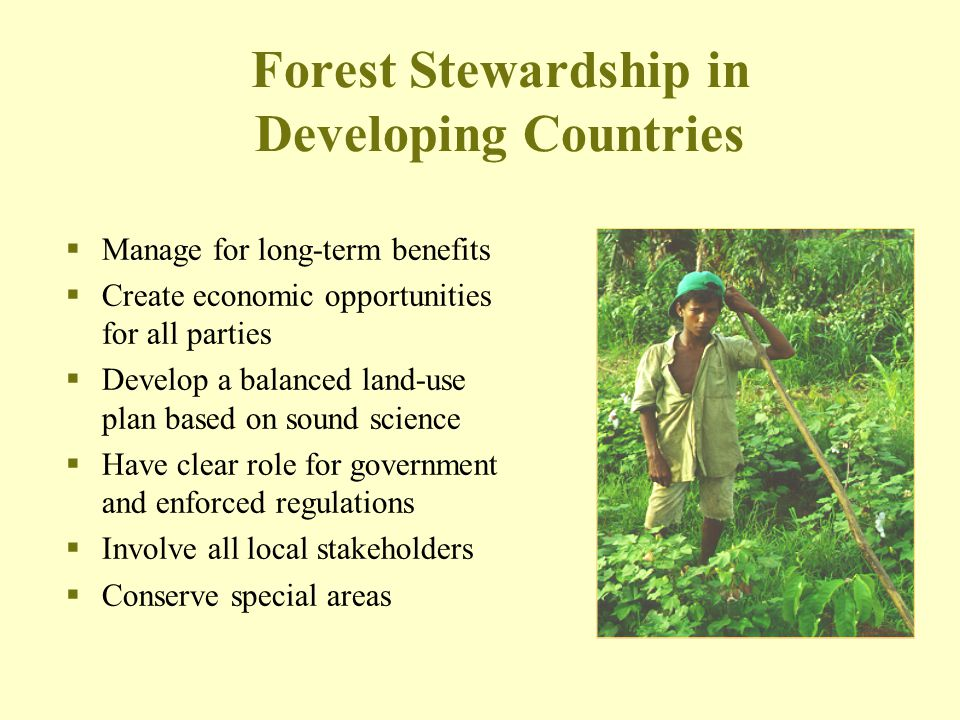Forest Stewardship in Developing Countries