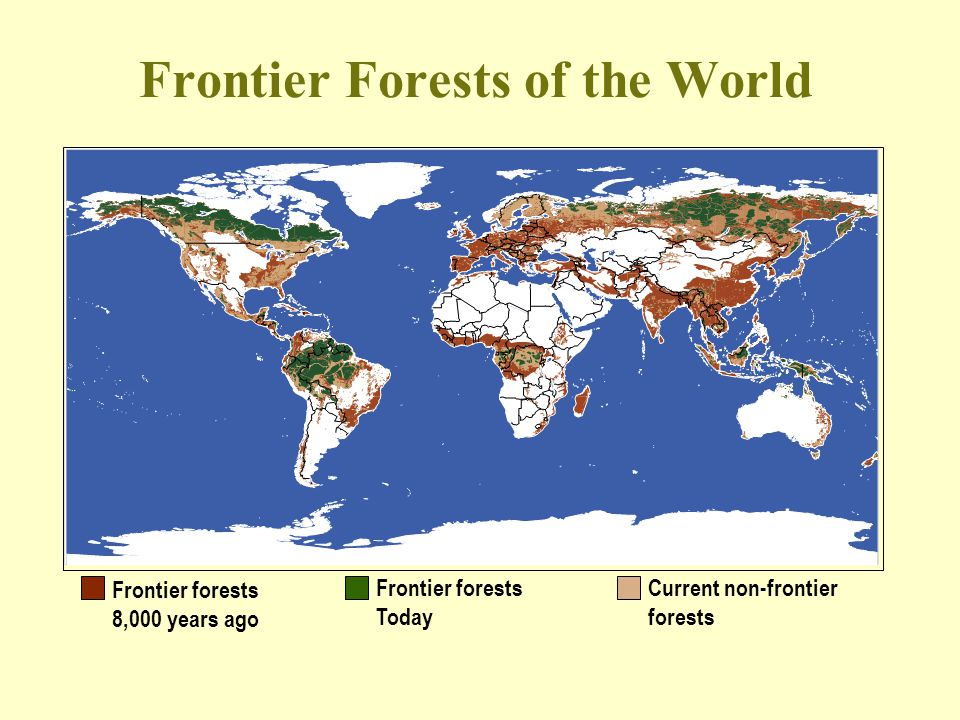 Frontier Forests of the World