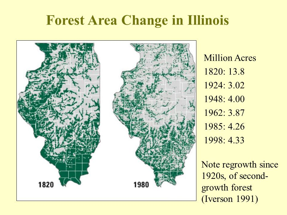 Forest Area Change in Illinois