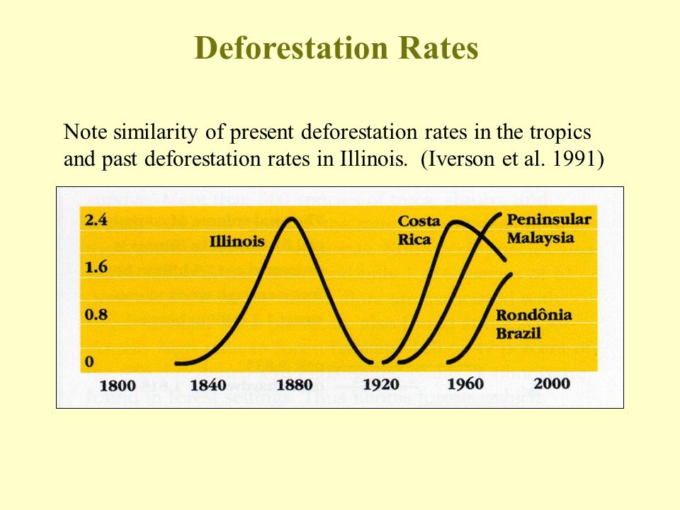 Deforestation Rates Note similarity of present deforestation rates in the tropics and past deforestation rates in Illinois.