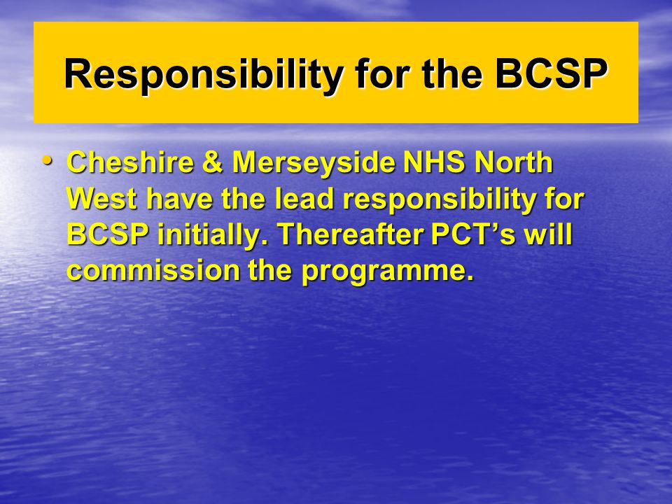 Responsibility for the BCSP