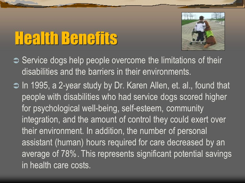 Health Benefits Service dogs help people overcome the limitations of their disabilities and the barriers in their environments.