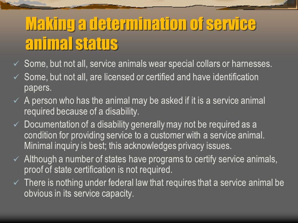 Making a determination of service animal status