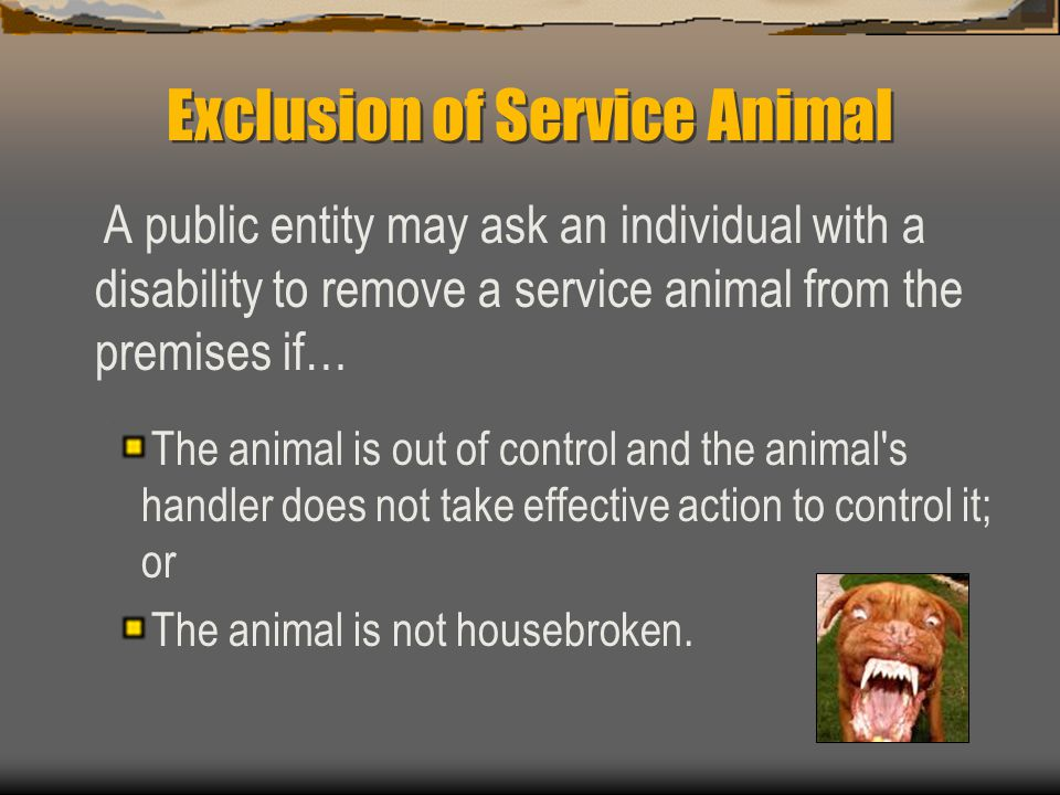 Exclusion of Service Animal
