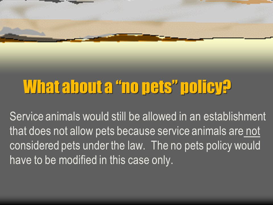 What about a no pets policy