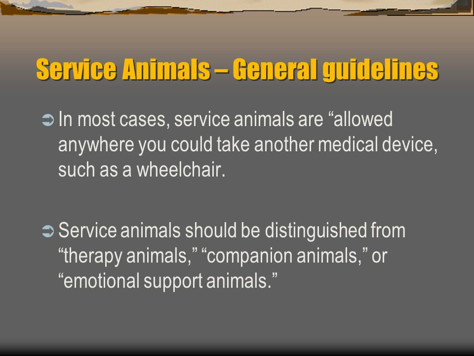 Service Animals – General guidelines