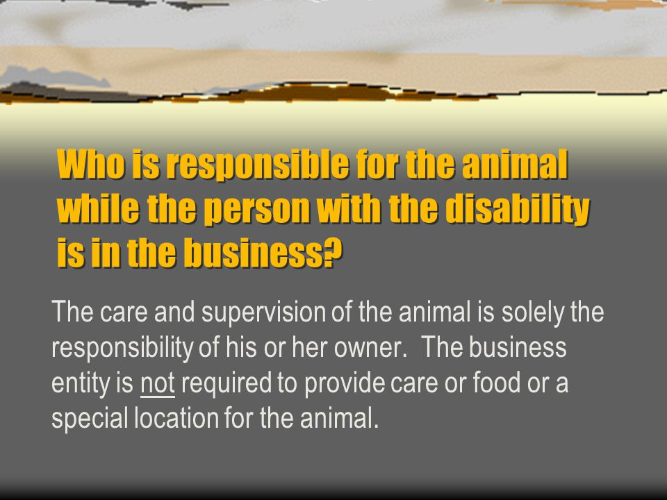 Who is responsible for the animal while the person with the disability is in the business