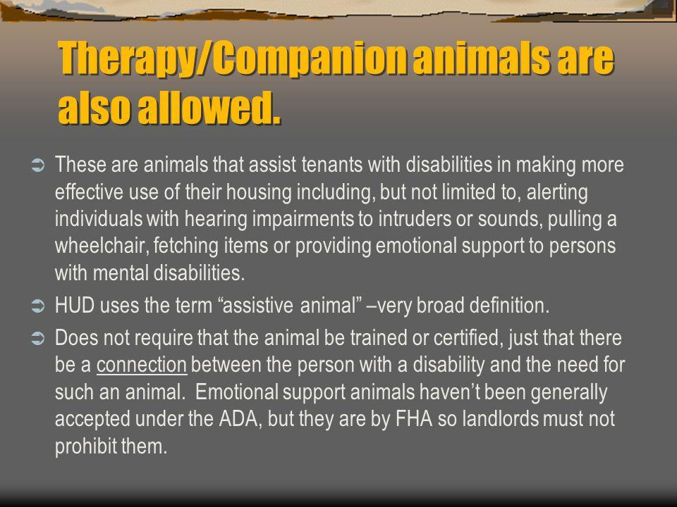 Therapy/Companion animals are also allowed.