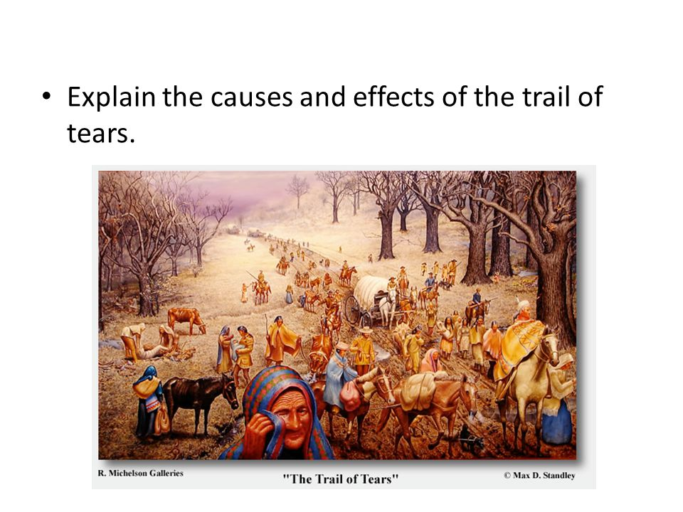Explain the causes and effects of the trail of tears.