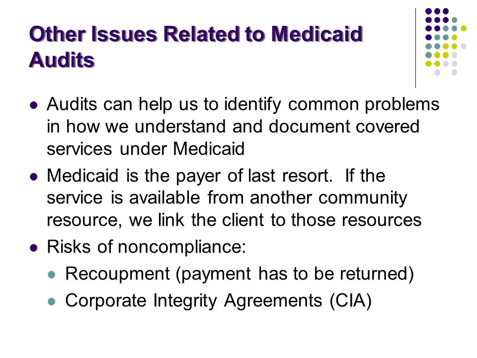 Other Issues Related to Medicaid Audits