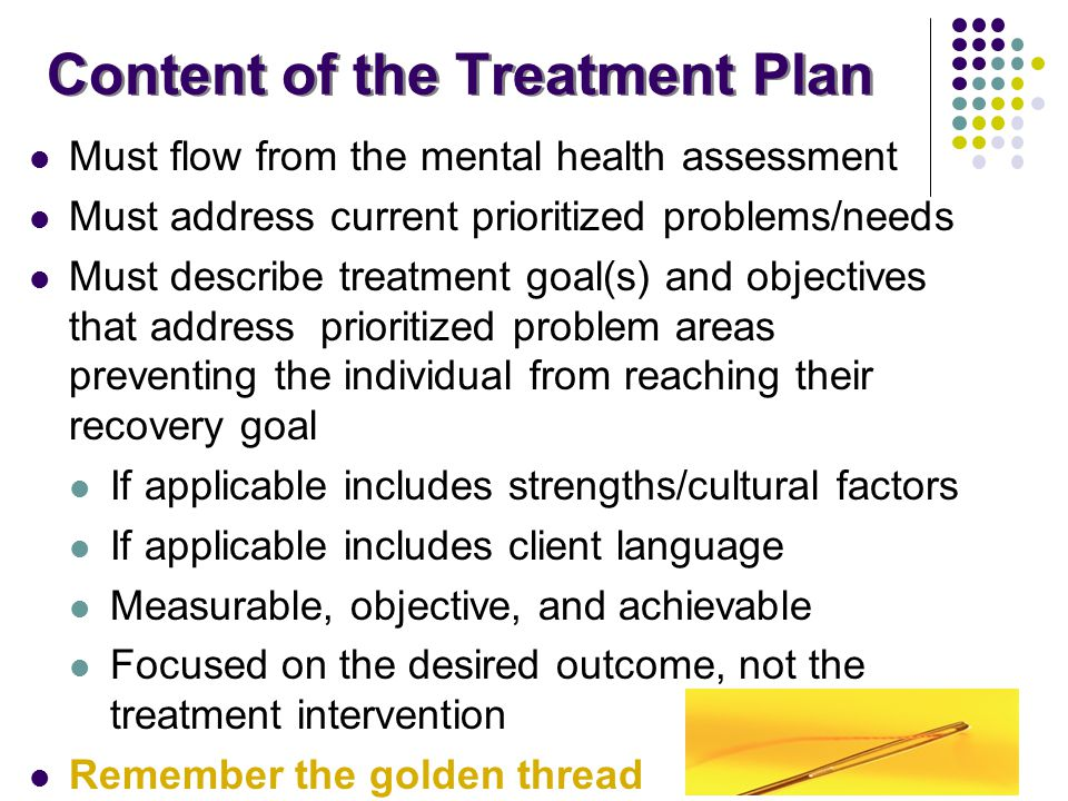 Content of the Treatment Plan