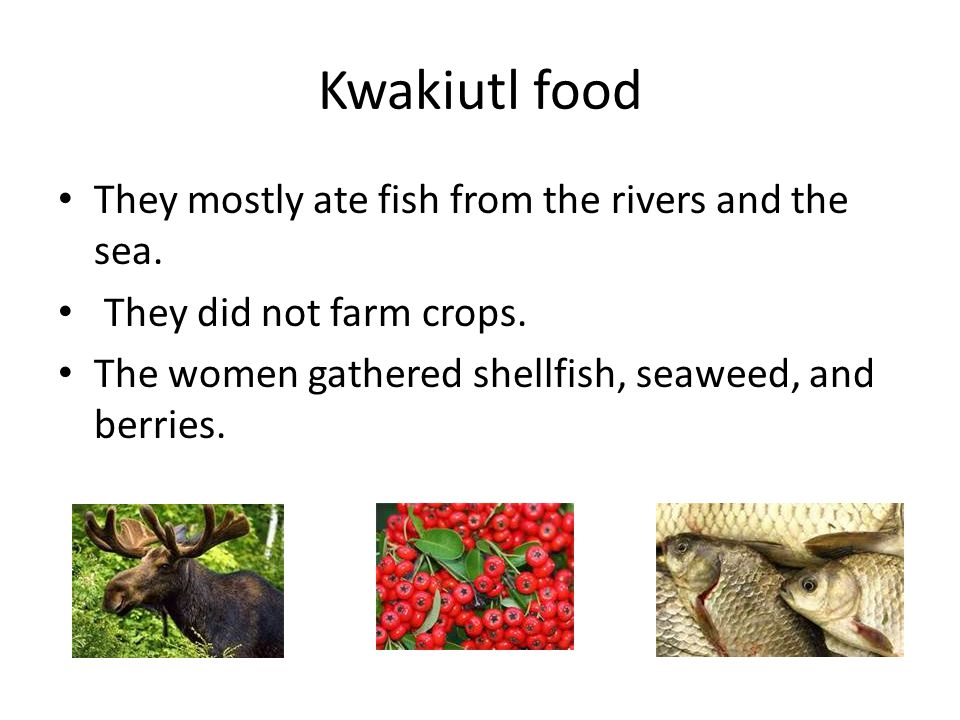 Kwakiutl food They mostly ate fish from the rivers and the sea.