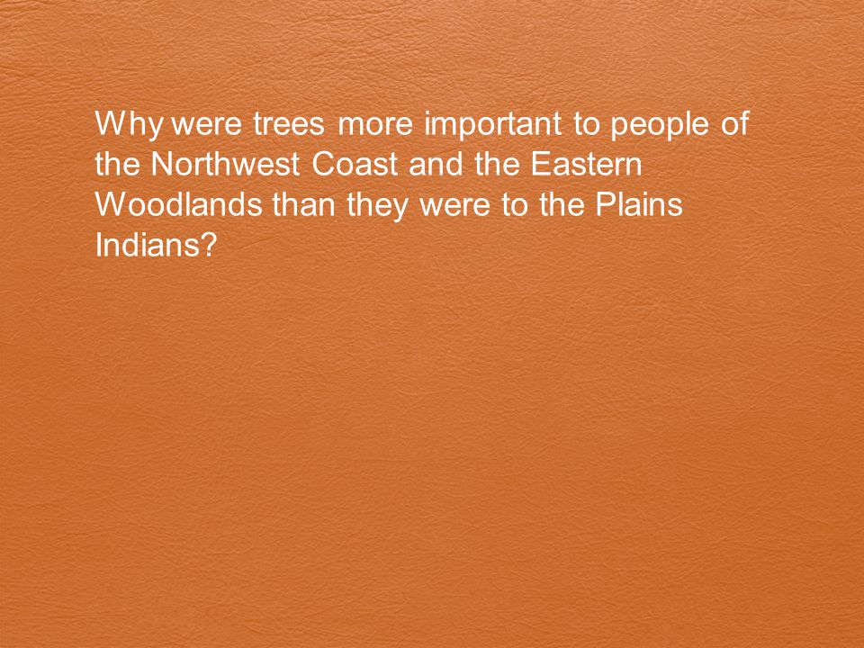 Why were trees more important to people of the Northwest Coast and the Eastern Woodlands than they were to the Plains Indians