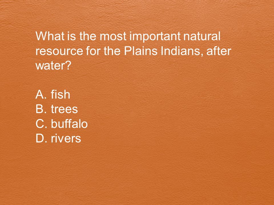 What is the most important natural resource for the Plains Indians, after water