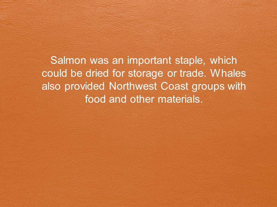 Salmon was an important staple, which could be dried for storage or trade.