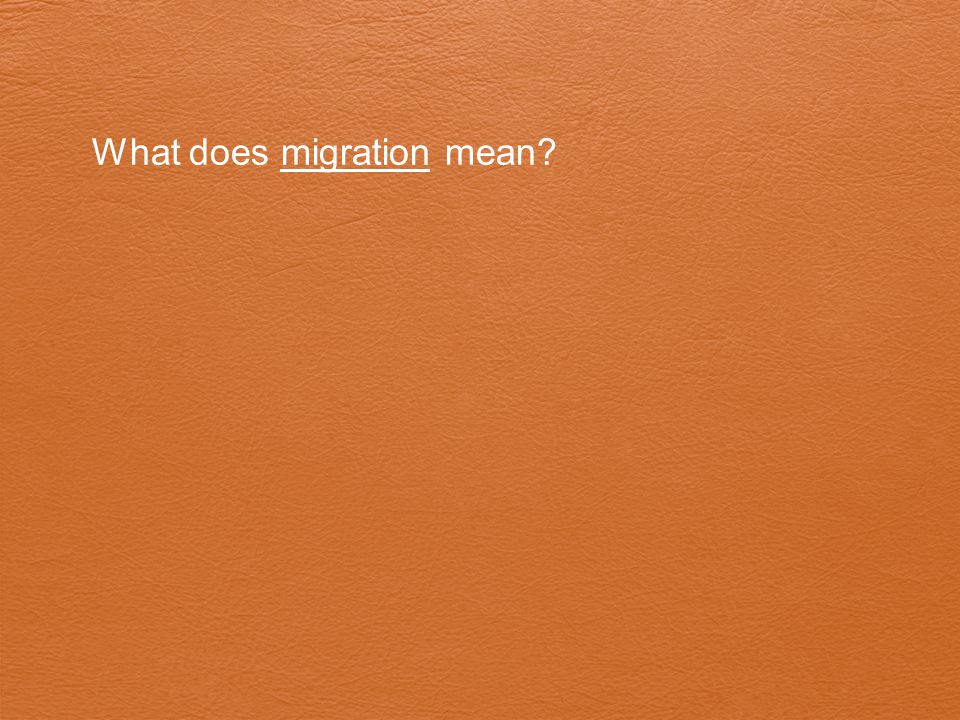 What does migration mean