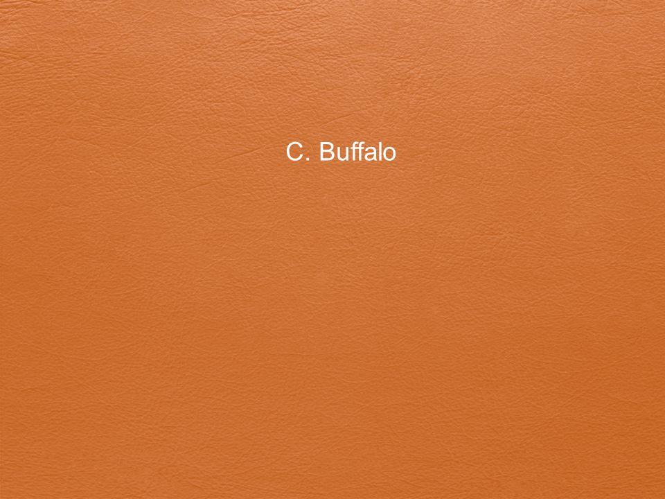 C. Buffalo