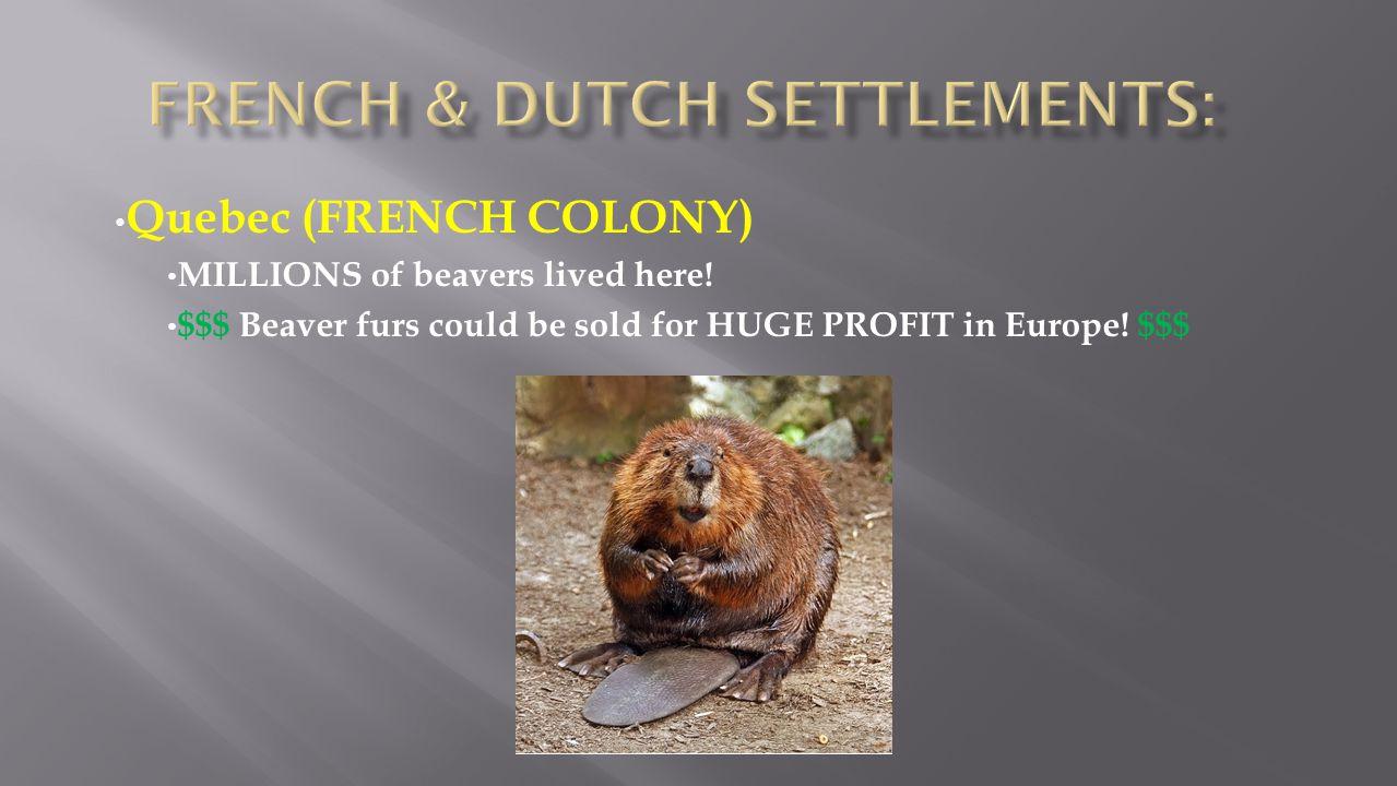 French & Dutch Settlements: