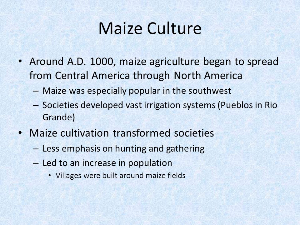 Maize Culture Around A.D. 1000, maize agriculture began to spread from Central America through North America.