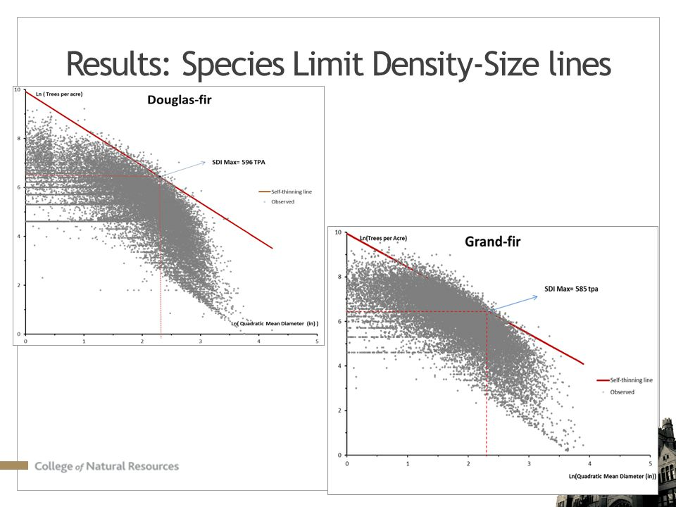 Results: Species Limit Density-Size lines