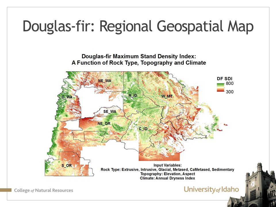 Douglas-fir: Regional Geospatial Map