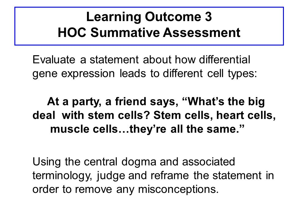 Learning Outcome 3 HOC Summative Assessment