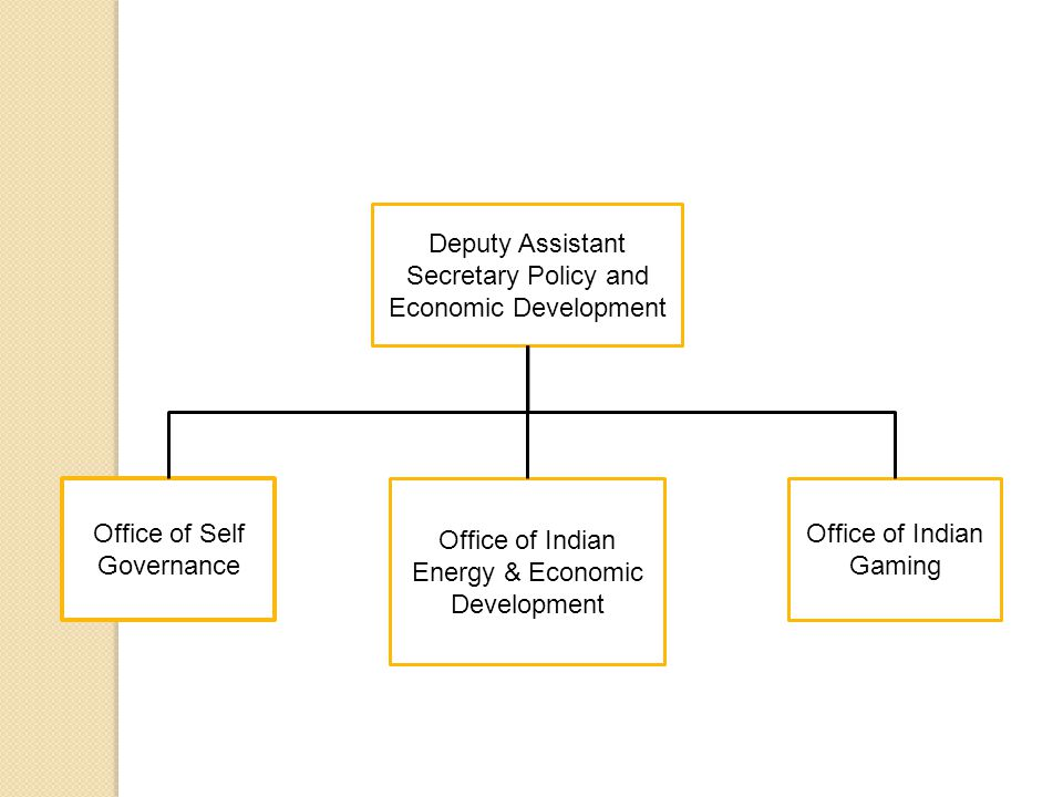 Deputy Assistant Secretary Policy and Economic Development