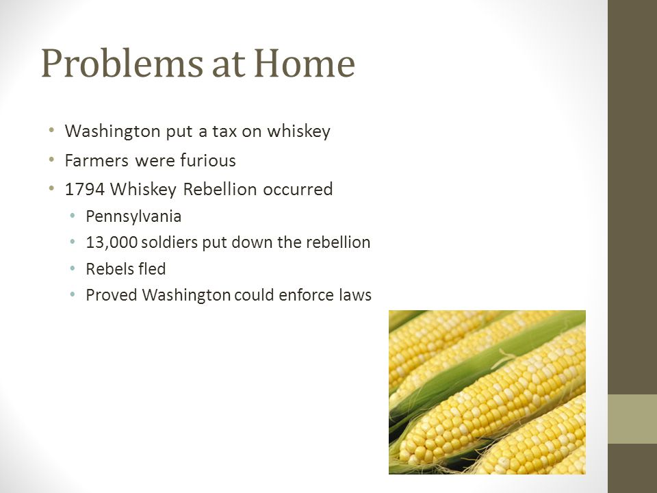 Problems at Home Washington put a tax on whiskey Farmers were furious
