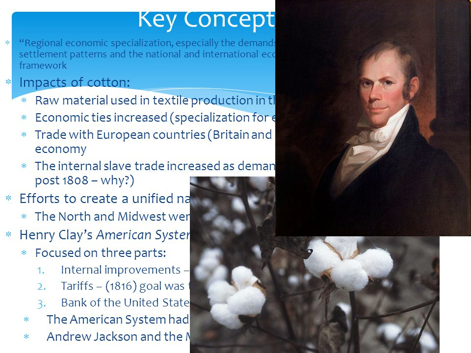 Key Concept 4.2 II Impacts of cotton: