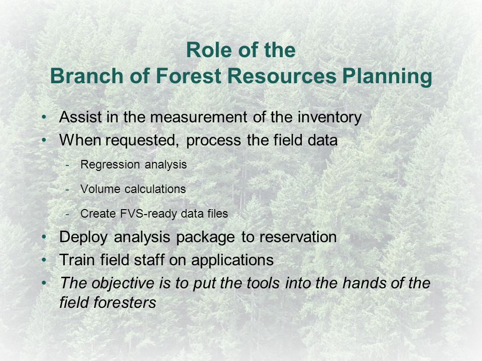 Role of the Branch of Forest Resources Planning