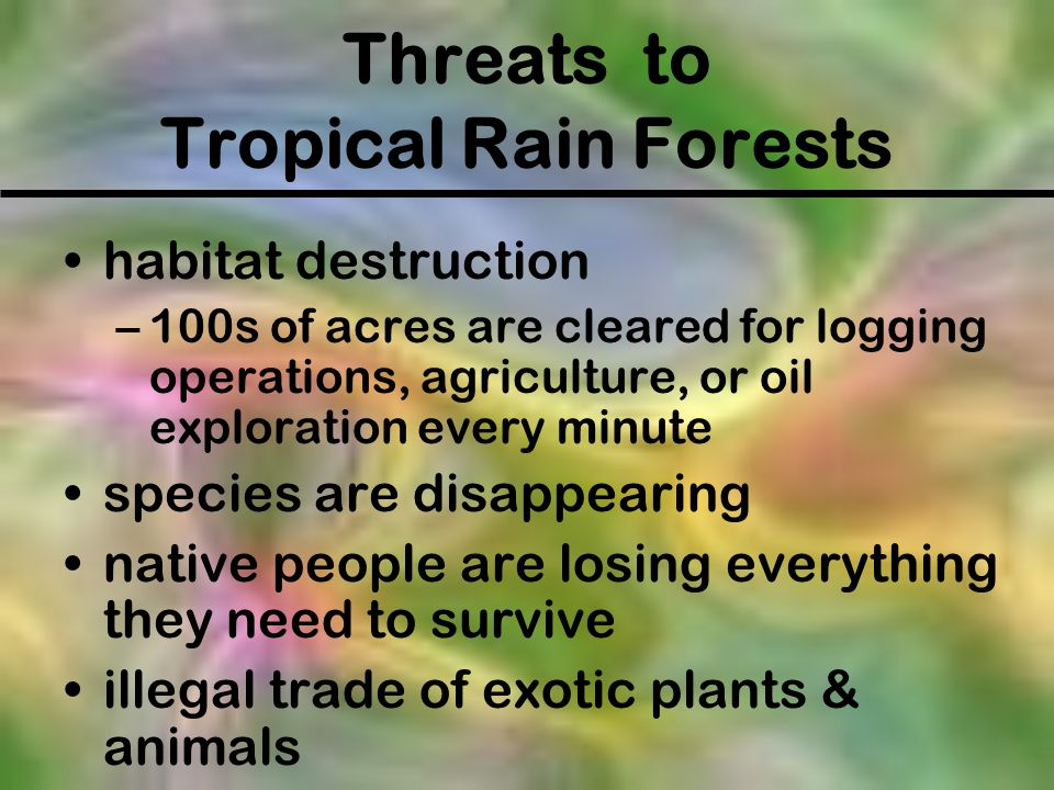 Threats to Tropical Rain Forests