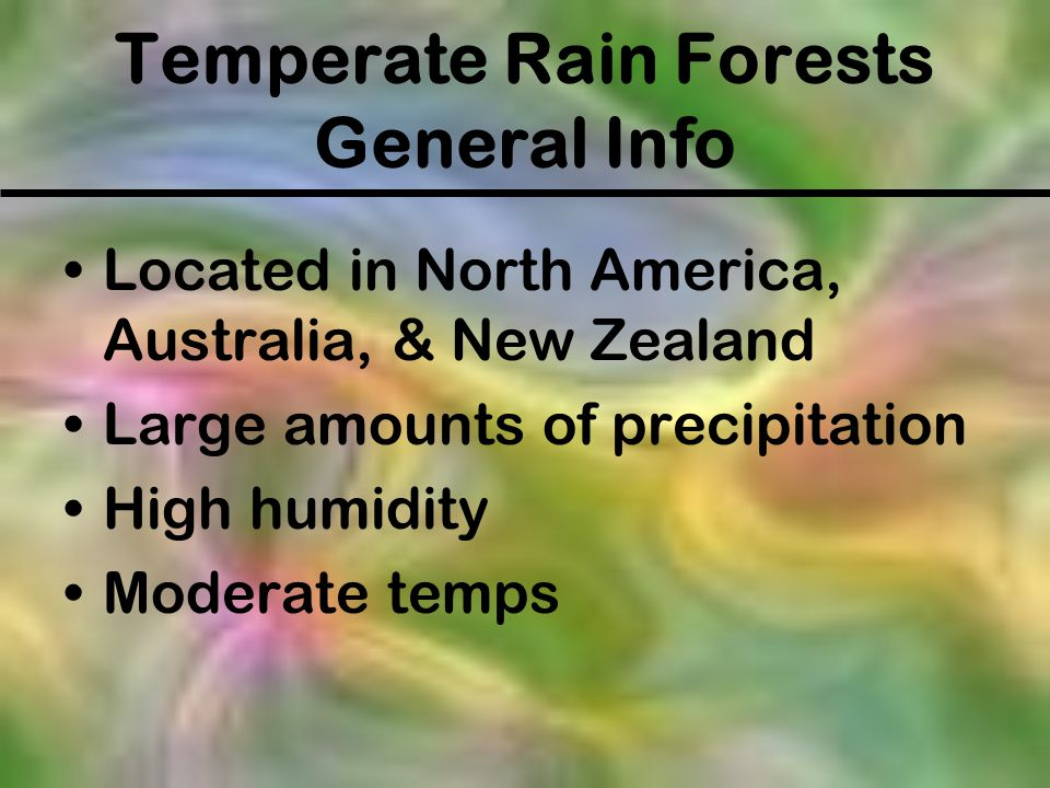 Temperate Rain Forests General Info