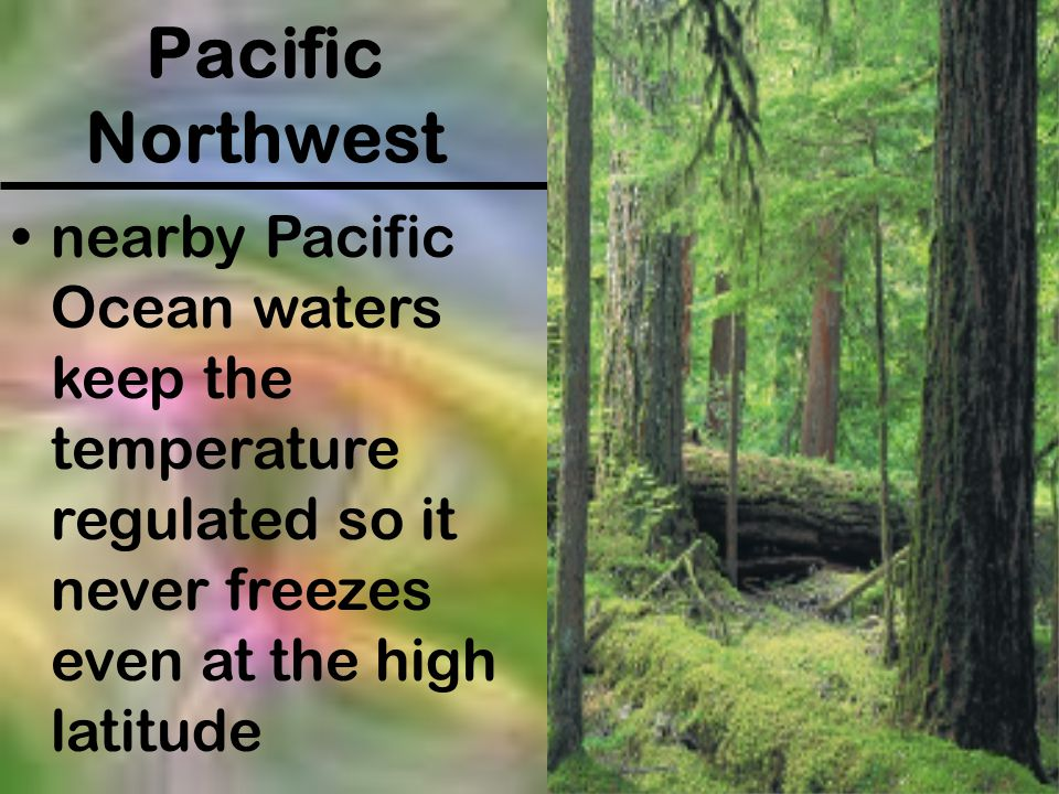 Pacific Northwest nearby Pacific Ocean waters keep the temperature regulated so it never freezes even at the high latitude.