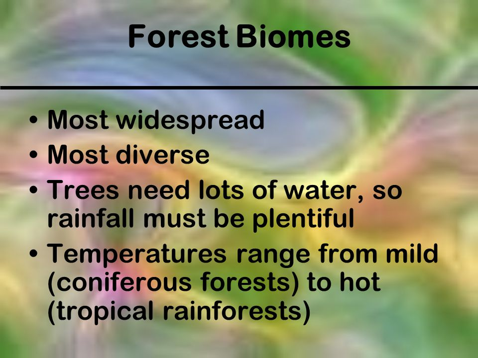 Forest Biomes Most widespread Most diverse